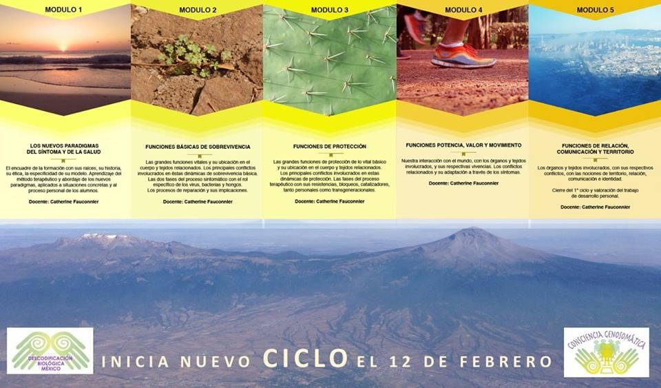 Descodificación Biológica México