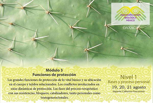 Módulo 3 Funciones de protección en Oaxaca