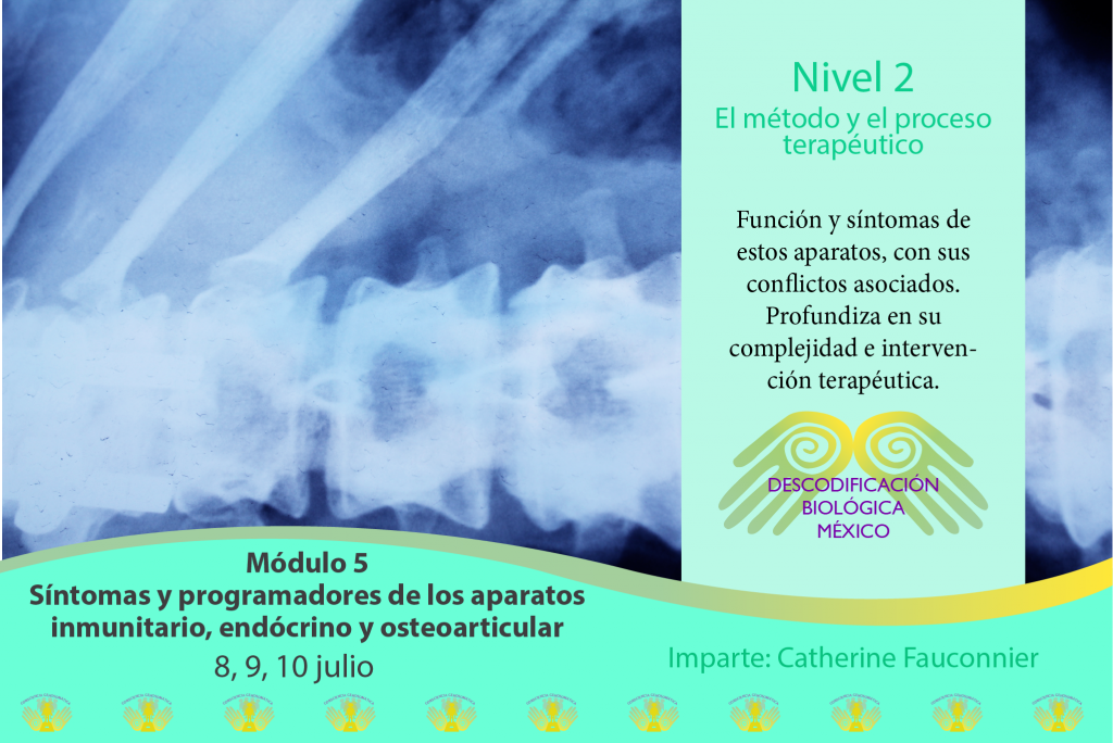 Nivel 2 de Descodificación Biológica México